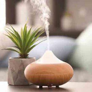 Diffuser & Ambient Fragrances