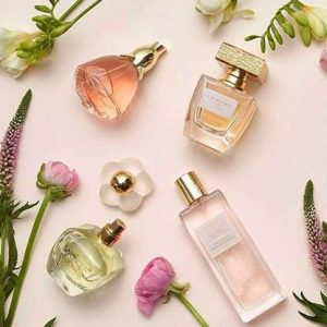 Fragrance & Deo